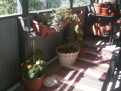 Nu är trädgården viktigare än köket