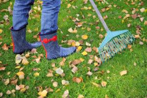 Styrelsens checklista inför hösten